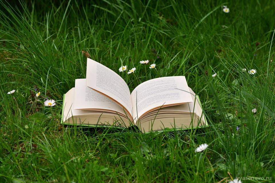 В Битцевском лесу прочитают «Сказки под сосной»