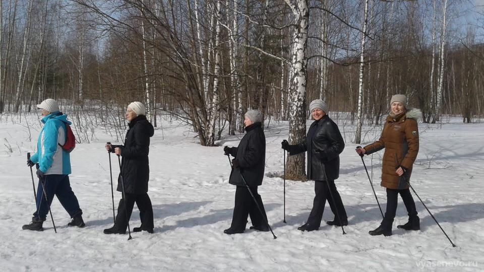 Тренировки по скандинавской ходьбе