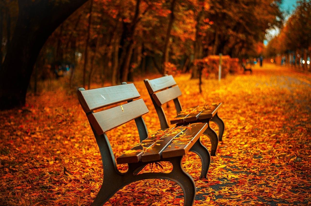 В Москву в октябре вернется теплая погода