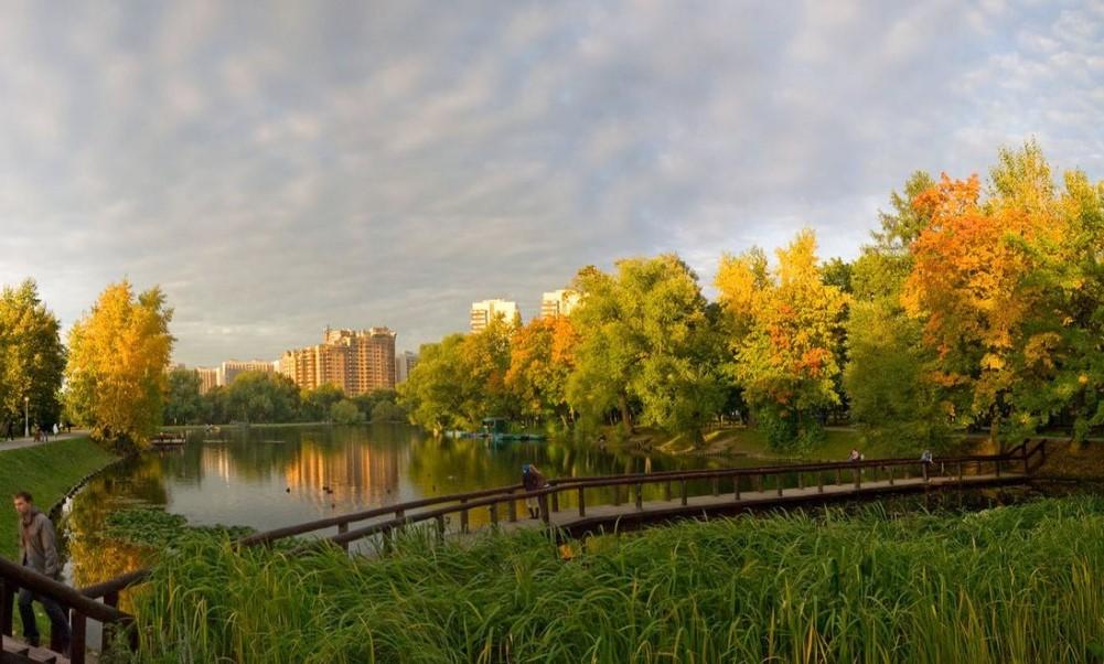 Ясенево: где в районе пройдут публичные слушания