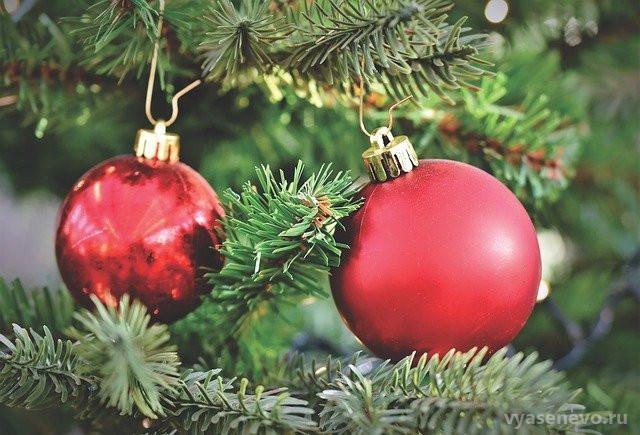 Елочные базары в районе будут работать до вечера 31 декабря