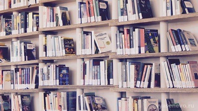 Библиотеки продлили период, в который можно сдать книги